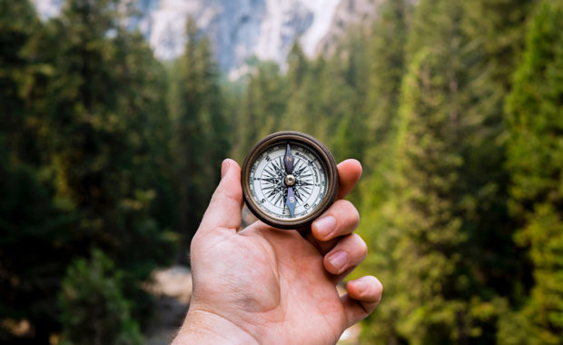 a business man holding a compass in the woods to represent executive coaching