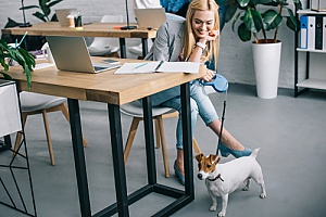 a dog being distracting in the workplace even though the company HR consulting team approved it