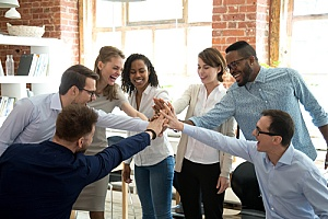 inclusion of diversity in the workplace
